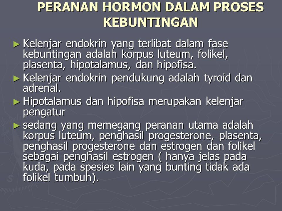 PERANAN HORMON DALAM PROSES KEBUNTINGAN ► Kelenjar endokrin yang terlibat dalam fase kebuntingan adalah korpus luteum, folikel, plasenta, hipotalamus, dan hipofisa.