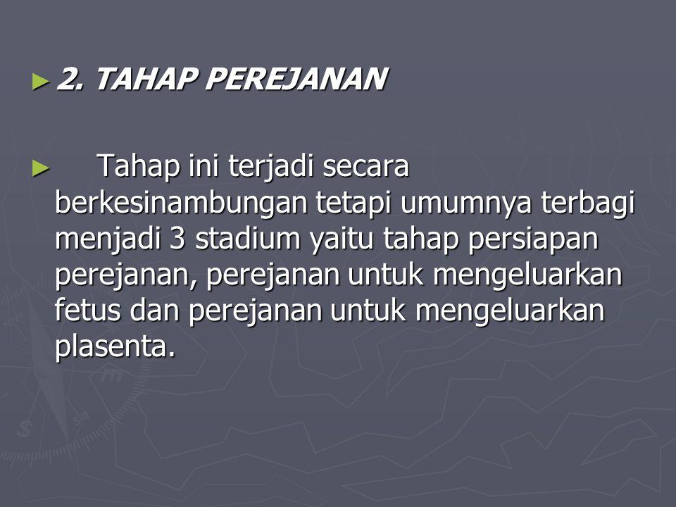 ► 2. TAHAP PEREJANAN ► Tahap ini terjadi secara berkesinambungan tetapi umumnya terbagi menjadi 3 stadium yaitu tahap persiapan perejanan, perejanan u