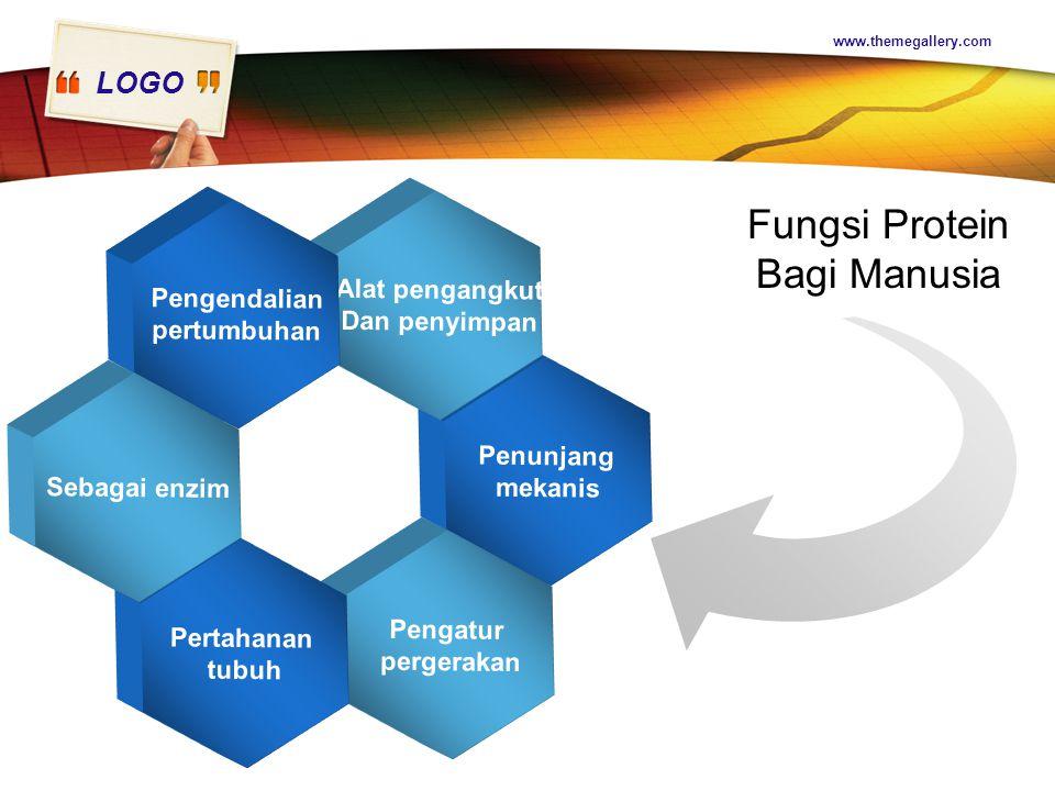 LOGO www.themegallery.com Penunjang mekanis Alat pengangkut Dan penyimpan Pengatur pergerakan Pengendalian pertumbuhan Pertahanan tubuh Sebagai enzim