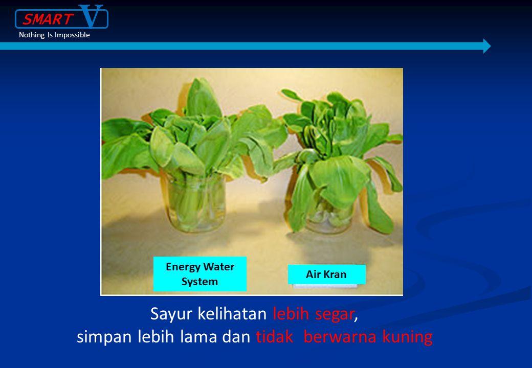 Sayur kelihatan lebih segar, simpan lebih lama dan tidak berwarna kuning Energy Water System Air Kran SMART V Nothing Is Impossible