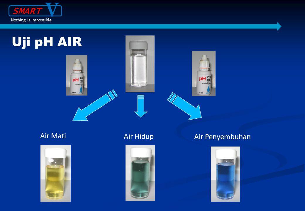 Air Hidup Air Mati Air Penyembuhan Uji pH AIR SMART V Nothing Is Impossible