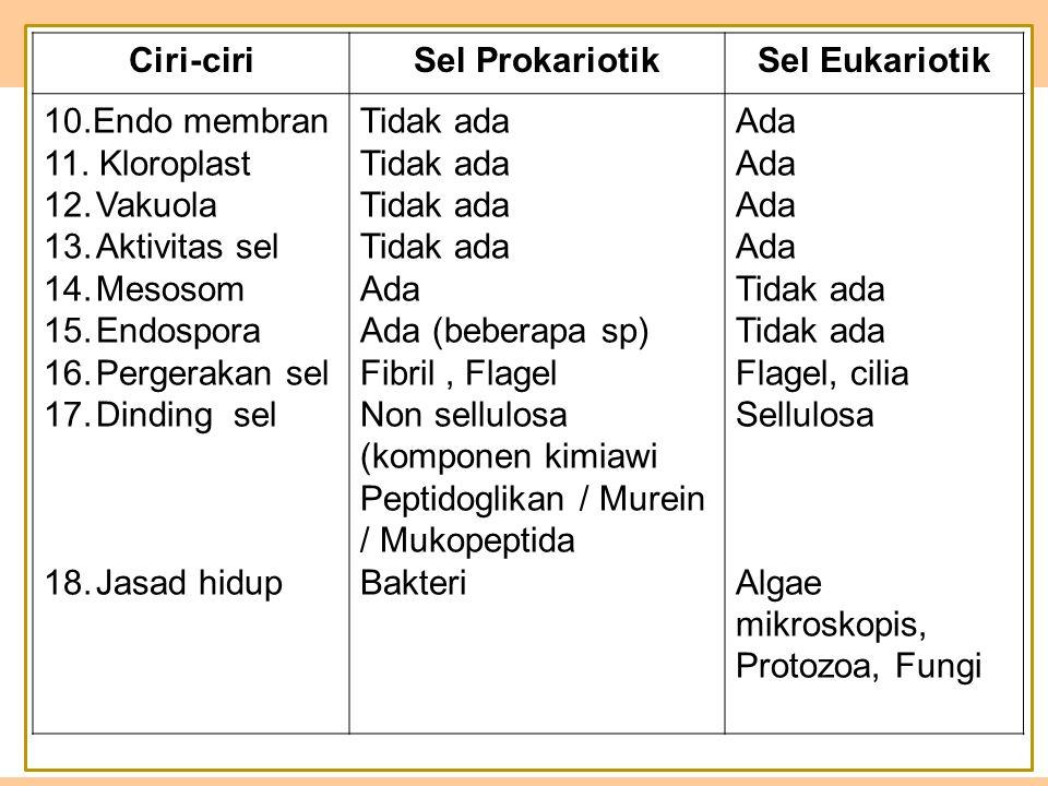Ciri-ciriSel ProkariotikSel Eukariotik 10.Endo membran 11.