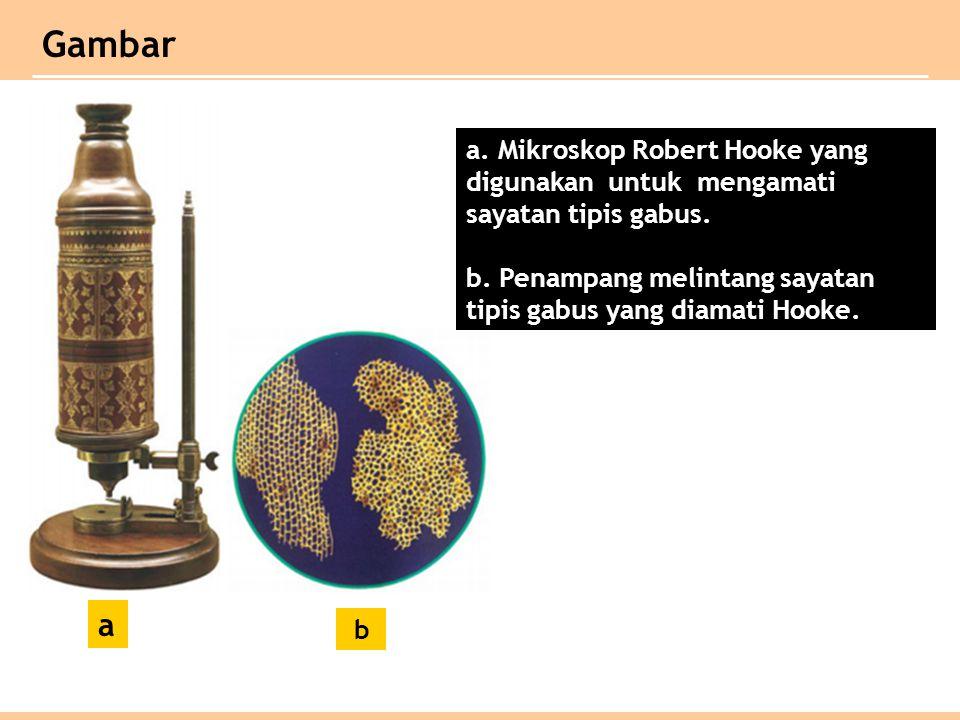 a.Mikroskop Robert Hooke yang digunakan untuk mengamati sayatan tipis gabus.