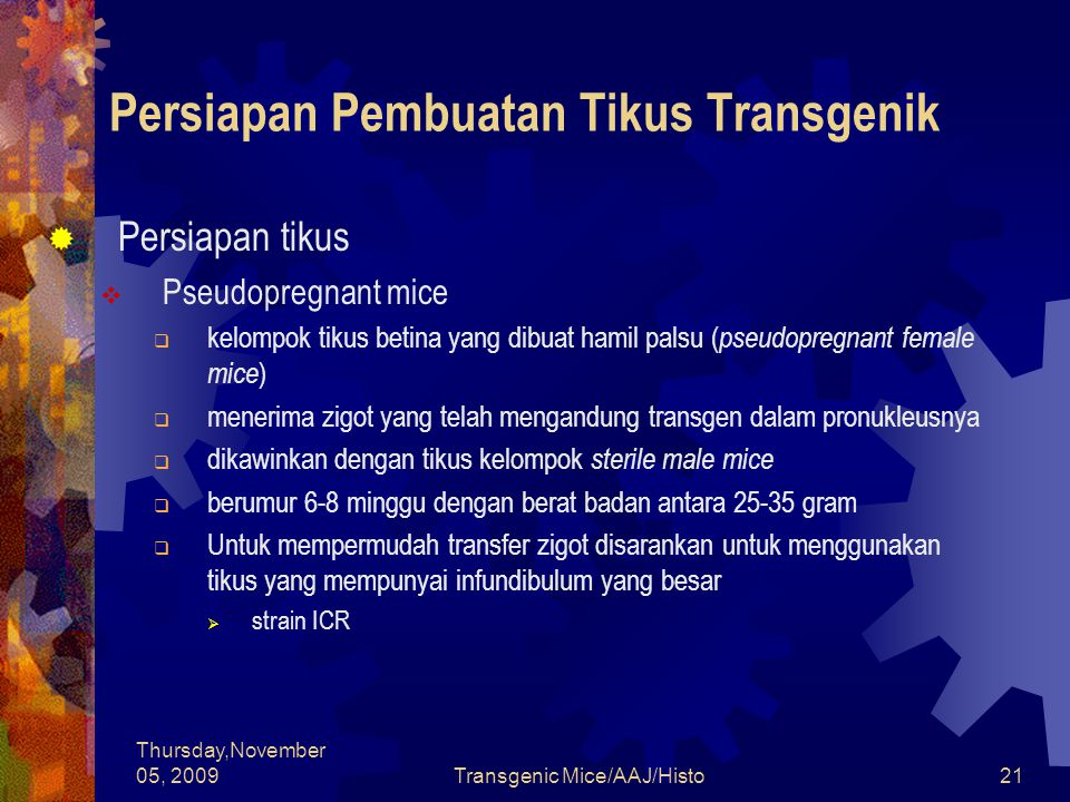 Thursday,November 05, 2009Transgenic Mice/AAJ/Histo21 Persiapan Pembuatan Tikus Transgenik  Persiapan tikus  Pseudopregnant mice  kelompok tikus be