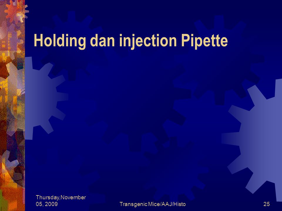 Thursday,November 05, 2009Transgenic Mice/AAJ/Histo25 Holding dan injection Pipette