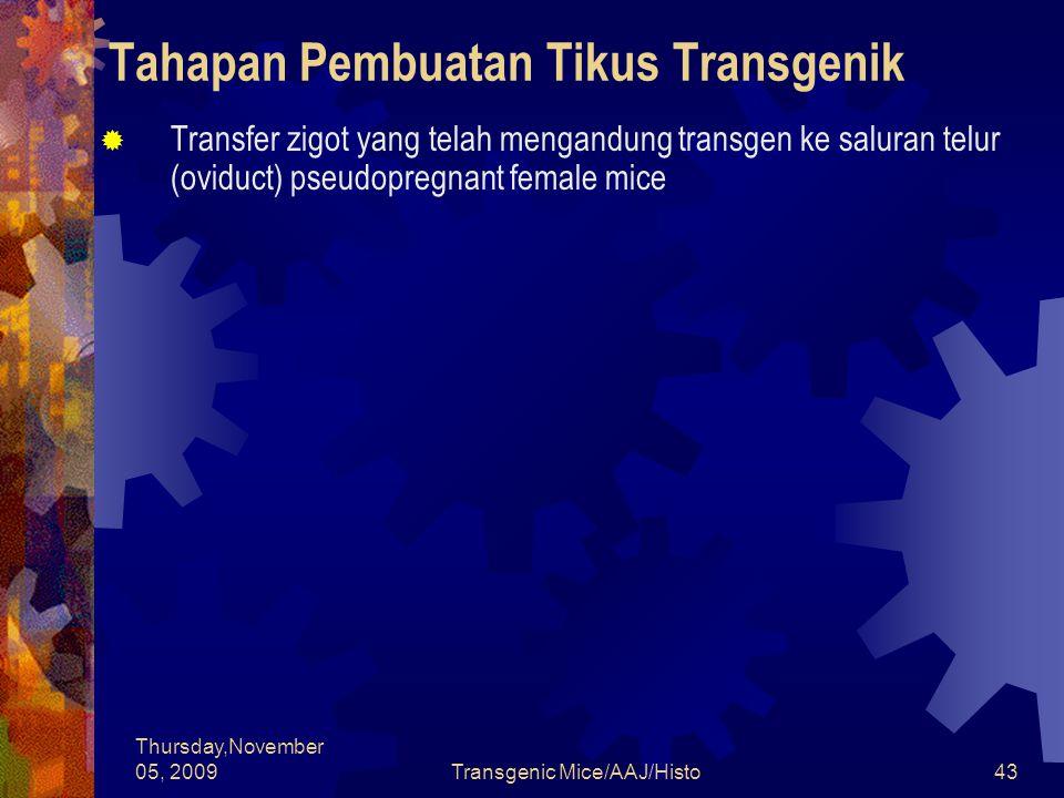 Thursday,November 05, 2009Transgenic Mice/AAJ/Histo43 Tahapan Pembuatan Tikus Transgenik  Transfer zigot yang telah mengandung transgen ke saluran telur (oviduct) pseudopregnant female mice