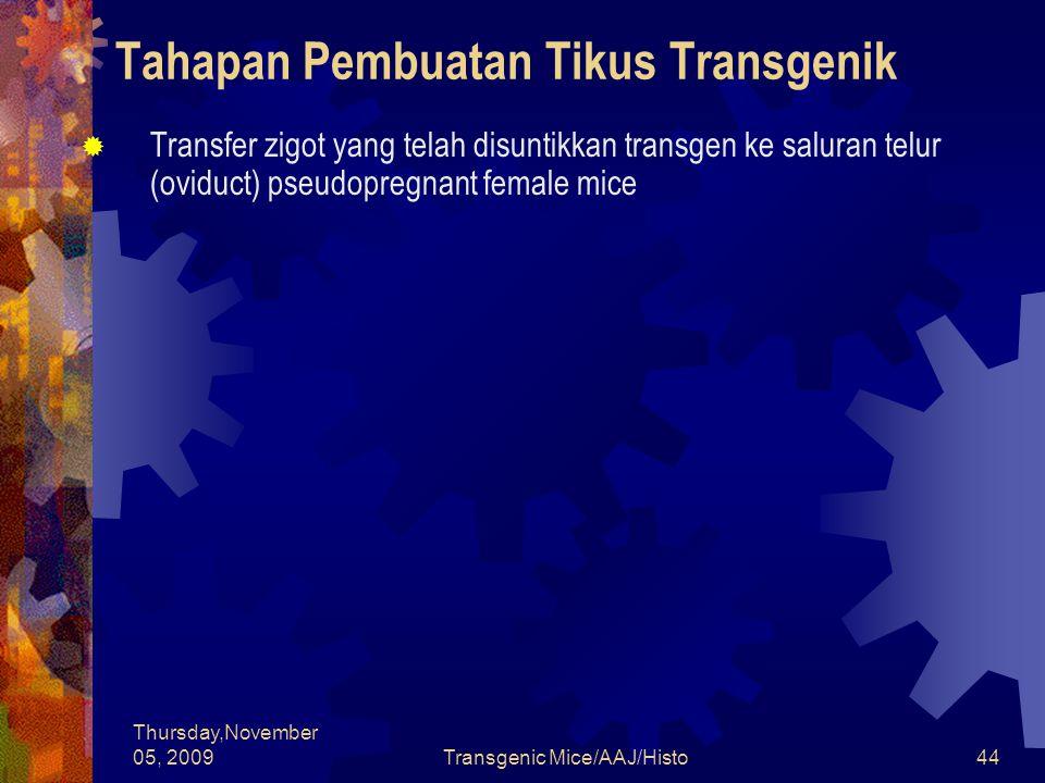 Thursday,November 05, 2009Transgenic Mice/AAJ/Histo44 Tahapan Pembuatan Tikus Transgenik  Transfer zigot yang telah disuntikkan transgen ke saluran telur (oviduct) pseudopregnant female mice