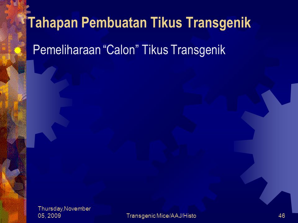 "Thursday,November 05, 2009Transgenic Mice/AAJ/Histo46 Tahapan Pembuatan Tikus Transgenik  Pemeliharaan ""Calon"" Tikus Transgenik"