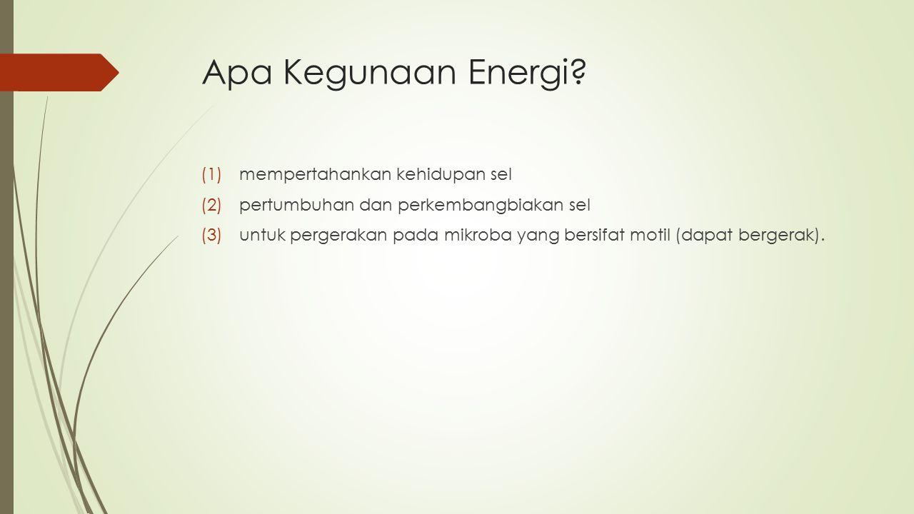 Apa Kegunaan Energi? (1)mempertahankan kehidupan sel (2)pertumbuhan dan perkembangbiakan sel (3)untuk pergerakan pada mikroba yang bersifat motil (dap