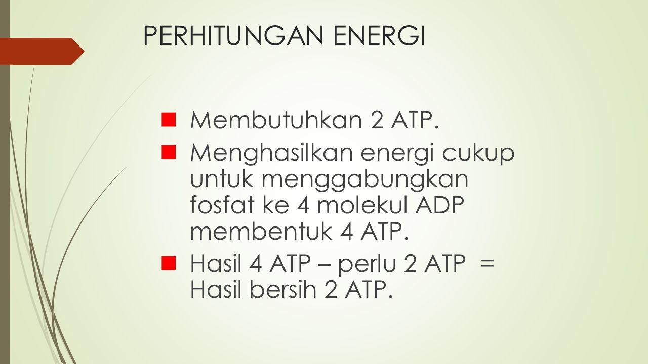 PERHITUNGAN ENERGI Membutuhkan 2 ATP. Menghasilkan energi cukup untuk menggabungkan fosfat ke 4 molekul ADP membentuk 4 ATP. Hasil 4 ATP – perlu 2 ATP