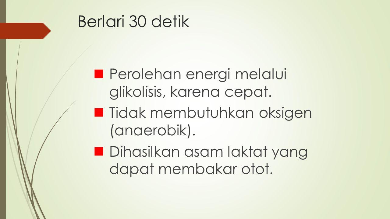 Berlari 30 detik Perolehan energi melalui glikolisis, karena cepat. Tidak membutuhkan oksigen (anaerobik). Dihasilkan asam laktat yang dapat membakar