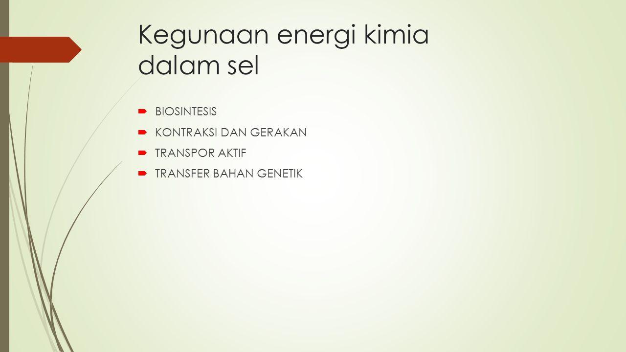 Kegunaan energi kimia dalam sel  BIOSINTESIS  KONTRAKSI DAN GERAKAN  TRANSPOR AKTIF  TRANSFER BAHAN GENETIK