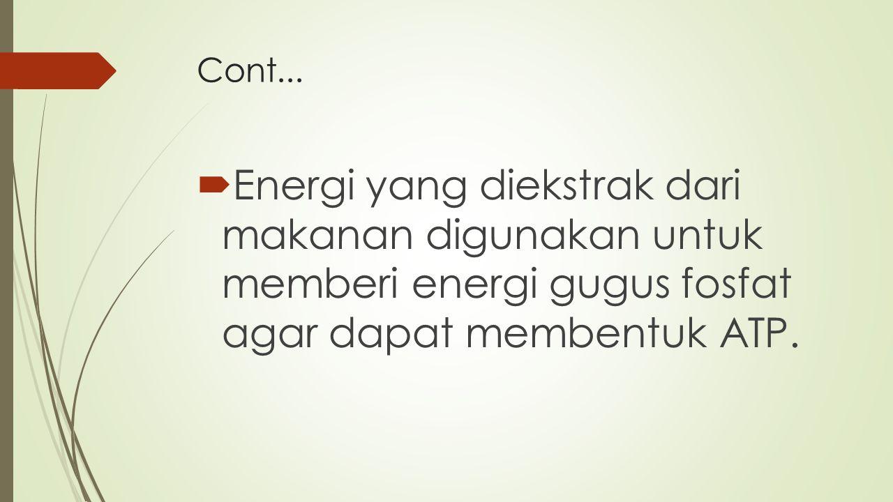 Cont...  Energi yang diekstrak dari makanan digunakan untuk memberi energi gugus fosfat agar dapat membentuk ATP.