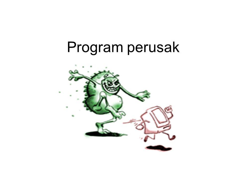 Program perusak