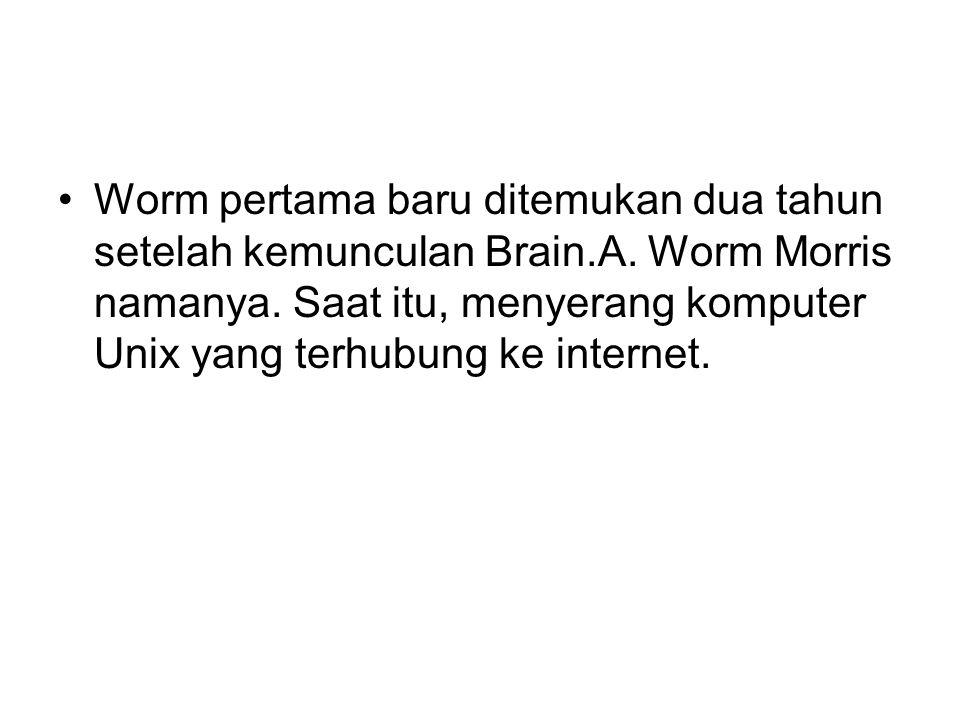 Worm pertama baru ditemukan dua tahun setelah kemunculan Brain.A.