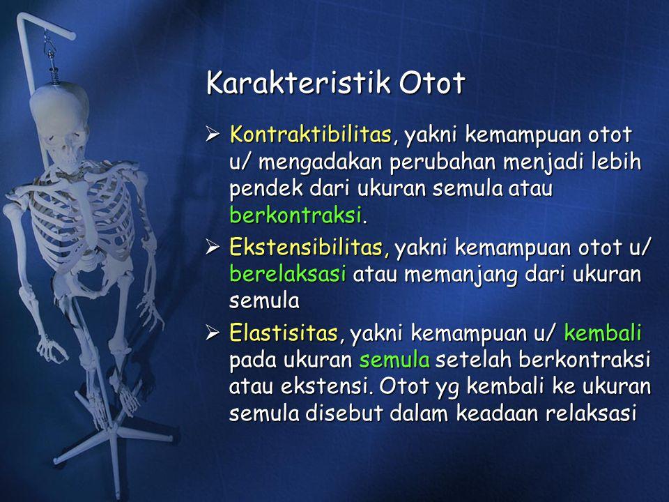 Karakteristik Otot  Kontraktibilitas, yakni kemampuan otot u/ mengadakan perubahan menjadi lebih pendek dari ukuran semula atau berkontraksi.  Ekste