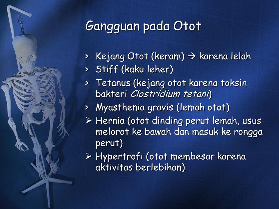 Gangguan pada Otot > Kejang Otot (keram)  karena lelah > Stiff (kaku leher) > Tetanus (kejang otot karena toksin bakteri Clostridium tetani) > Myasth