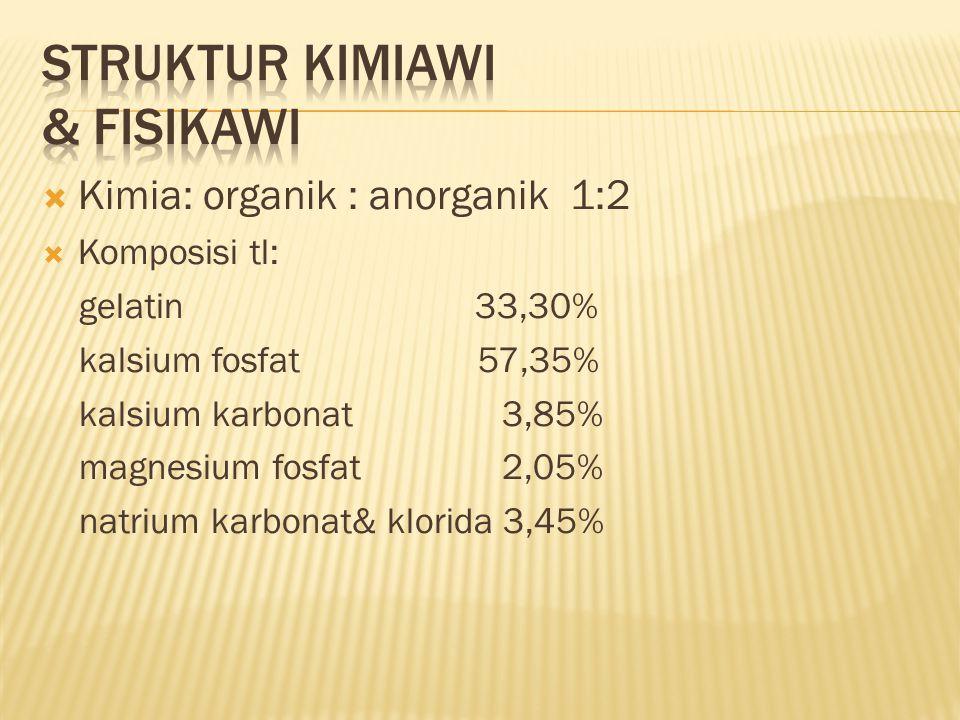 Kimia: organik : anorganik 1:2  Komposisi tl: gelatin 33,30% kalsium fosfat 57,35% kalsium karbonat 3,85% magnesium fosfat 2,05% natrium karbonat& klorida 3,45%