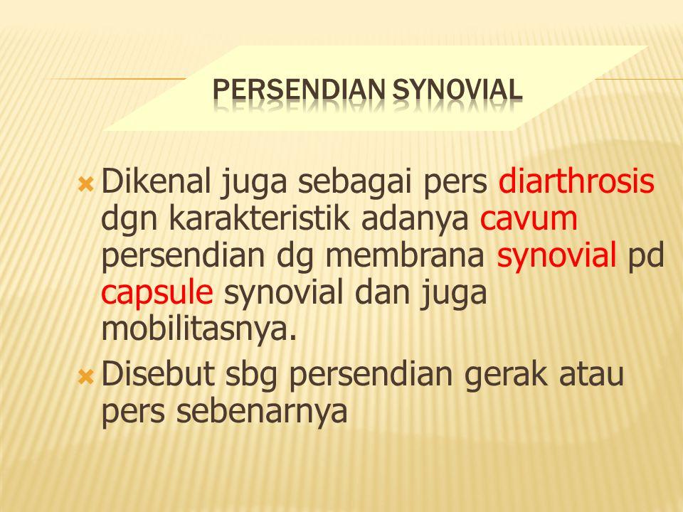 Dikenal juga sebagai pers diarthrosis dgn karakteristik adanya cavum persendian dg membrana synovial pd capsule synovial dan juga mobilitasnya.