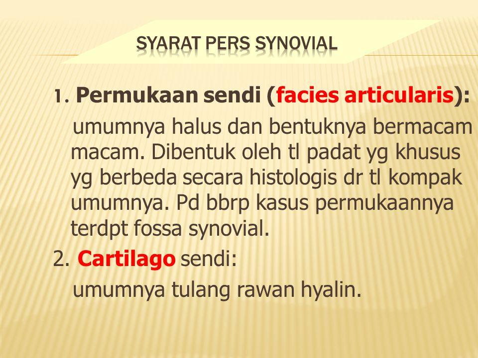 1.Permukaan sendi (facies articularis): umumnya halus dan bentuknya bermacam macam.