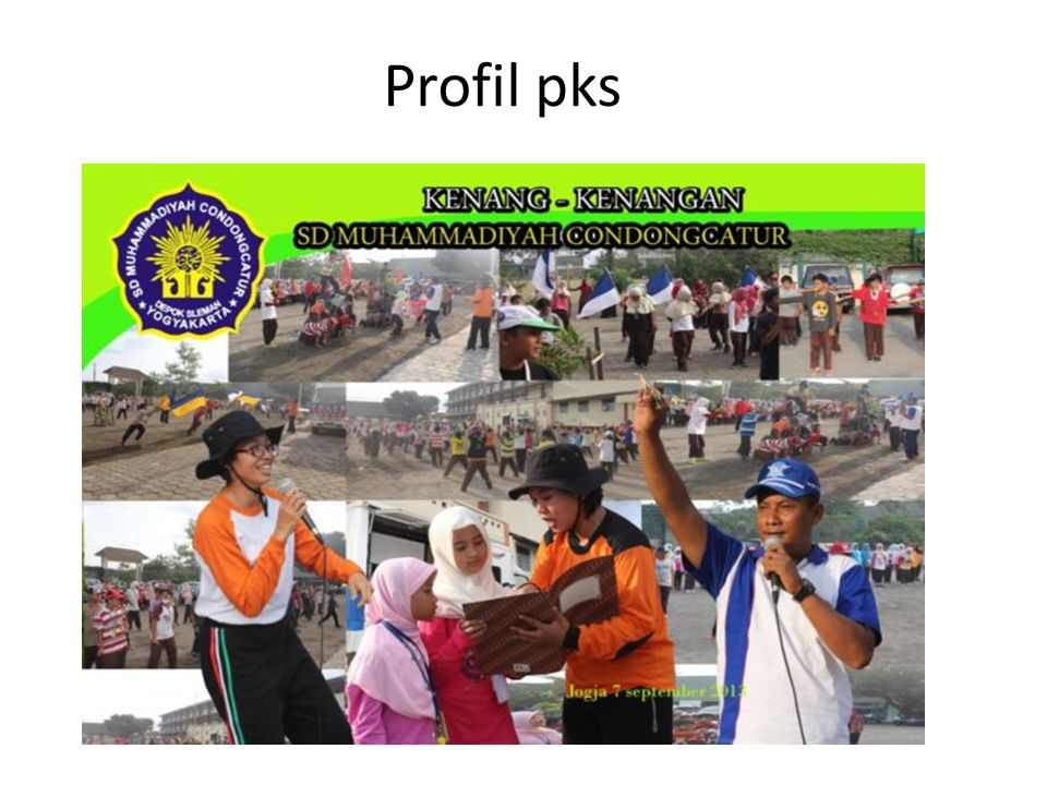 Profil pks