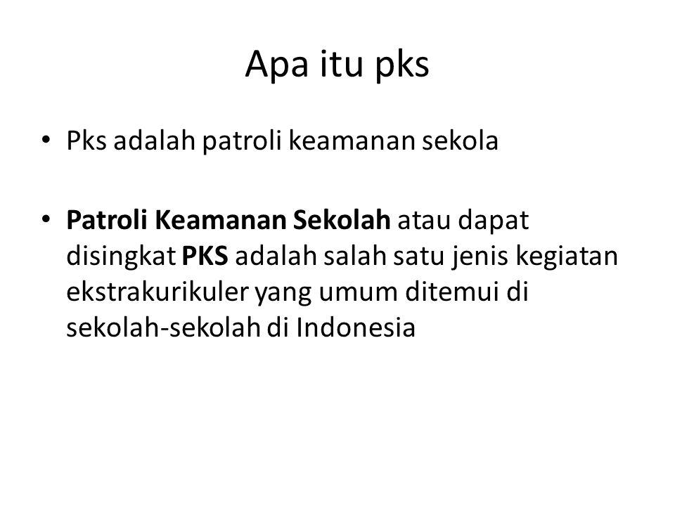 Apa itu pks Pks adalah patroli keamanan sekola Patroli Keamanan Sekolah atau dapat disingkat PKS adalah salah satu jenis kegiatan ekstrakurikuler yang umum ditemui di sekolah-sekolah di Indonesia