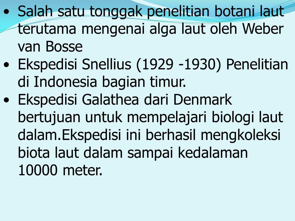 Salah satu tonggak penelitian botani laut terutama mengenai alga laut oleh Weber van Bosse Ekspedisi Snellius (1929 -1930) Penelitian di Indonesia bagian timur.