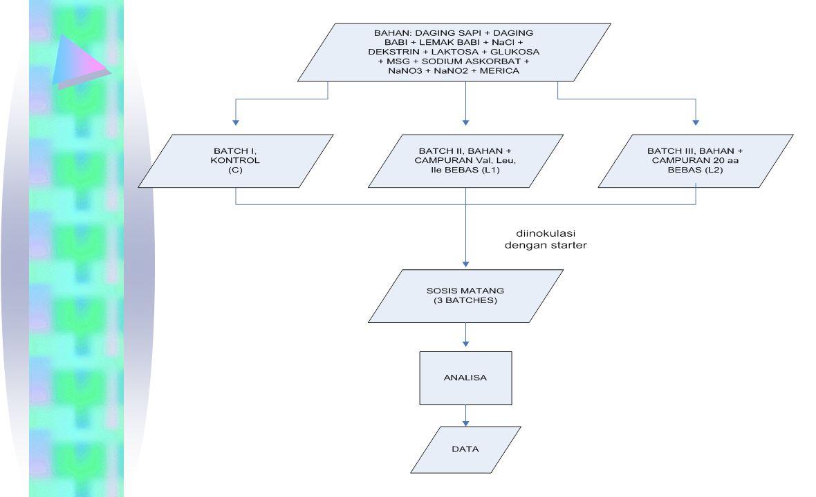 3 kelompok sampel bahan sosis: Kontrol (C), bahan tanpa tambahan L1, bahan + 0,159% (g/100 g sosis) campuran val, ile, leu (58/35/66 w/w) L2, bahan + 1,01% (g/100 g sosis) campuran 20 asam amino (gly/asn/his/arg/thr/ala/pro/tyr/val/met/ile/leu/phe/trp/lys/asp/glu/ser/gl n/cys), dengan komposisi (19/19/105/41/55/69/90/10/58/27/35/66/35/62/110/56/106/18/19/10) (w/w).