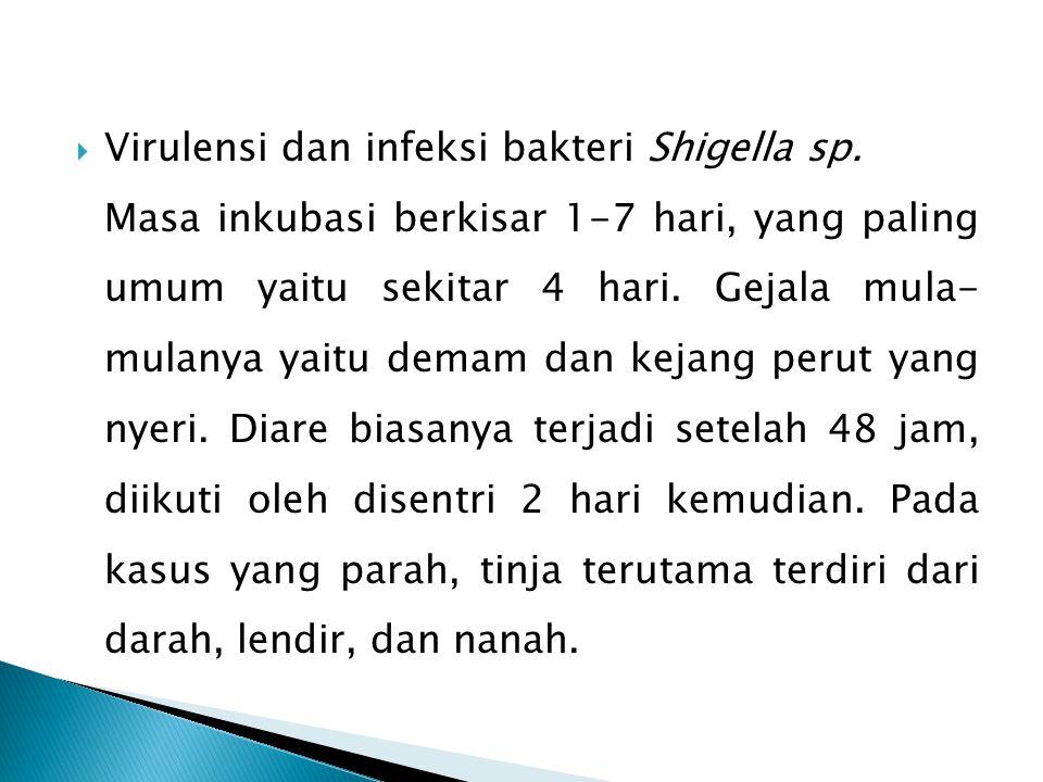 -Shigella mempenetrasi intraselular epitel usus besar - Terjadi perbanyakan bakteri -Menghasilkan endotoksin yang mempunyai kegiatan biologis - S.