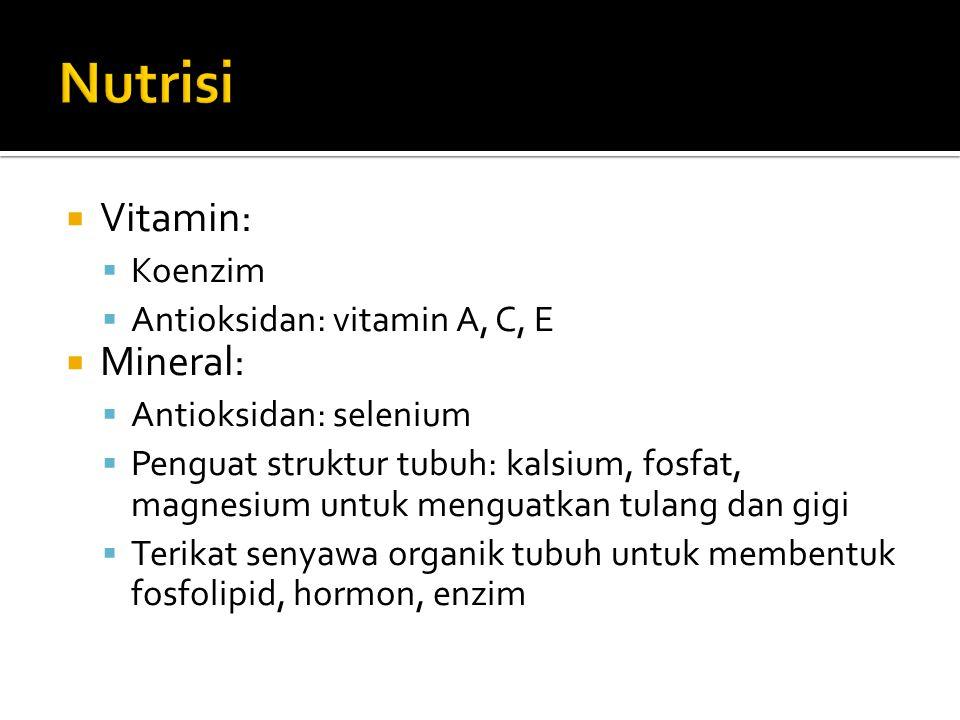  Vitamin:  Koenzim  Antioksidan: vitamin A, C, E  Mineral:  Antioksidan: selenium  Penguat struktur tubuh: kalsium, fosfat, magnesium untuk meng