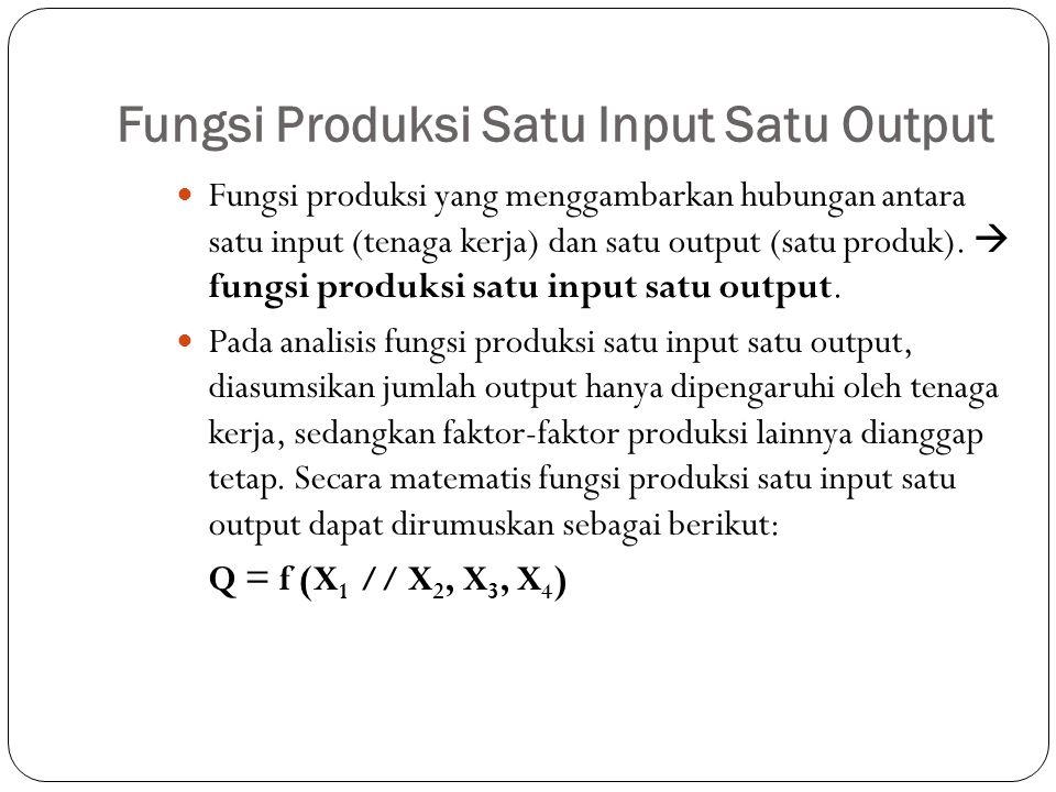 Fungsi Produksi Satu Input Satu Output Fungsi produksi yang menggambarkan hubungan antara satu input (tenaga kerja) dan satu output (satu produk).