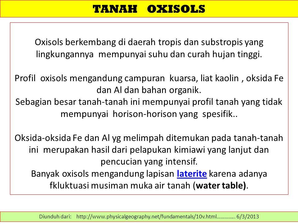 TANAH OXISOLS Oxisols berkembang di daerah tropis dan substropis yang lingkungannya mempunyai suhu dan curah hujan tinggi.