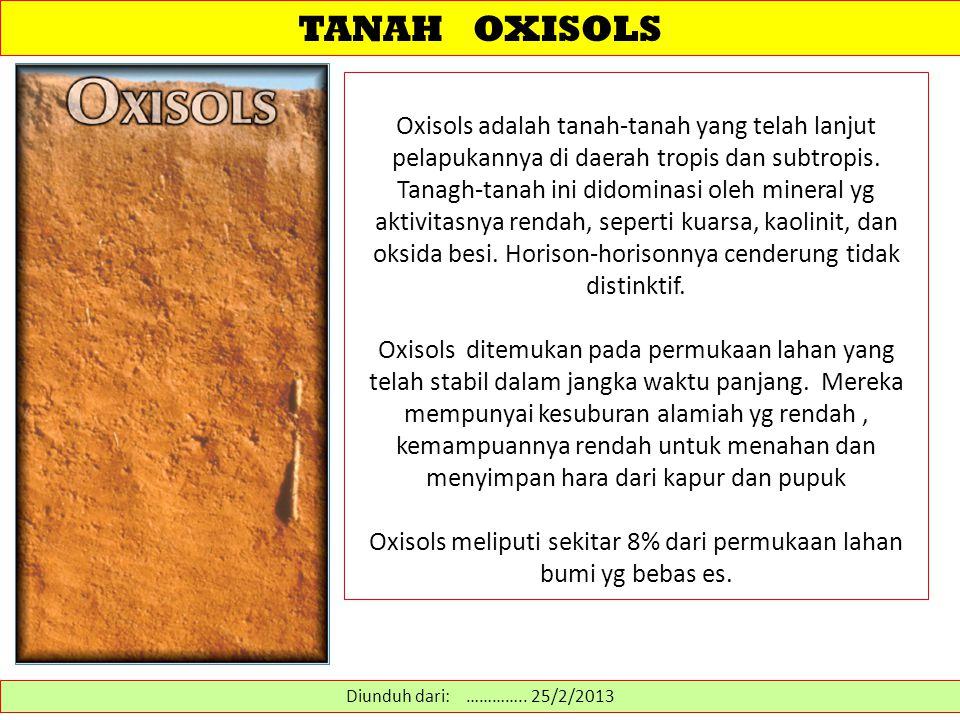 TANAH OXISOLS Oxisols adalah tanah-tanah yang telah lanjut pelapukannya di daerah tropis dan subtropis.
