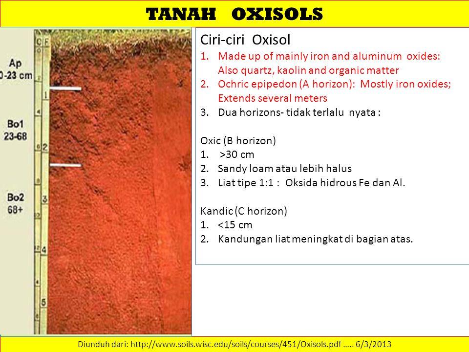 TANAH OXISOLS Diunduh dari: http://www.soils.wisc.edu/soils/courses/451/Oxisols.pdf …..