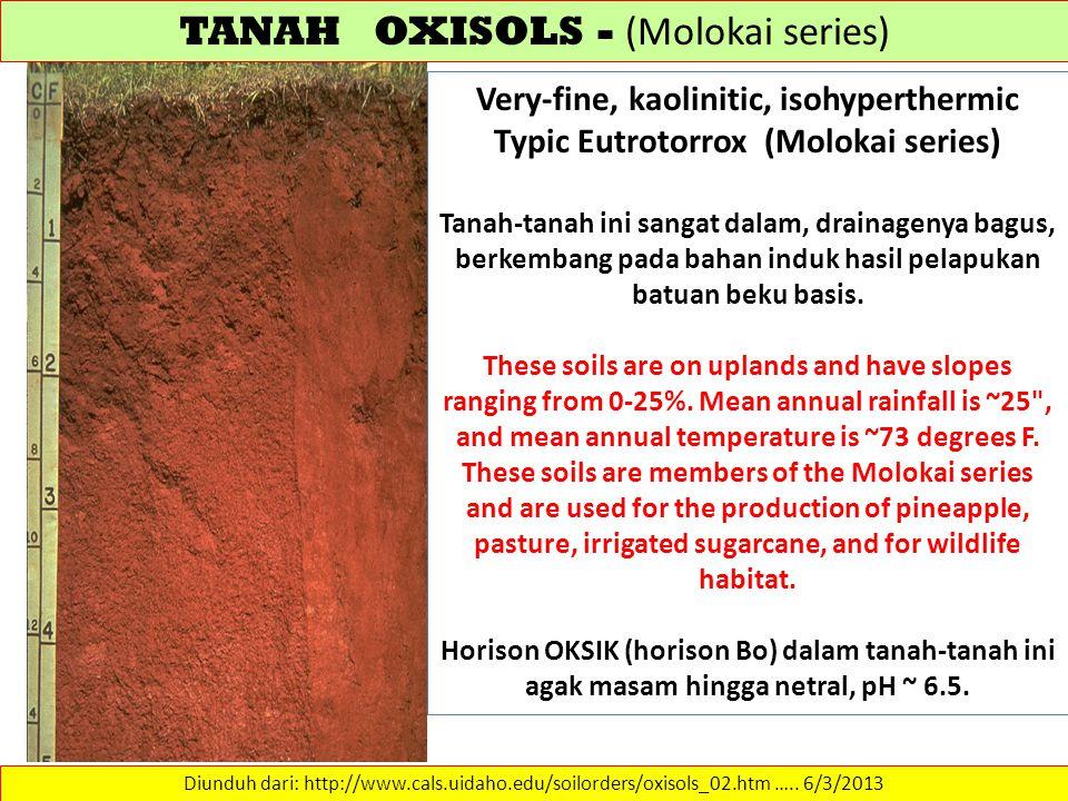 TANAH OXISOLS - (Molokai series) Diunduh dari: http://www.cals.uidaho.edu/soilorders/oxisols_02.htm …..