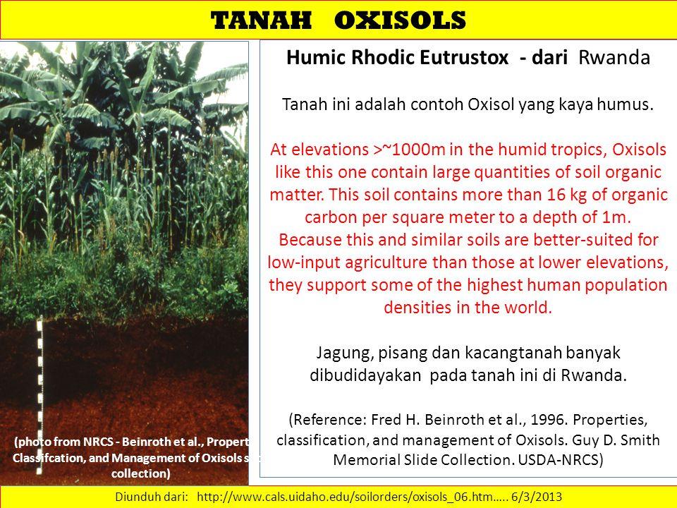 TANAH OXISOLS Diunduh dari: http://www.cals.uidaho.edu/soilorders/oxisols_06.htm…..