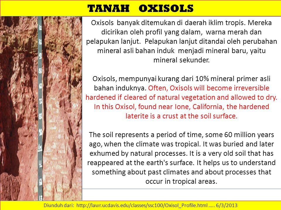 TANAH OXISOLS Diunduh dari: http://lawr.ucdavis.edu/classes/ssc100/Oxisol_Profile.html …..