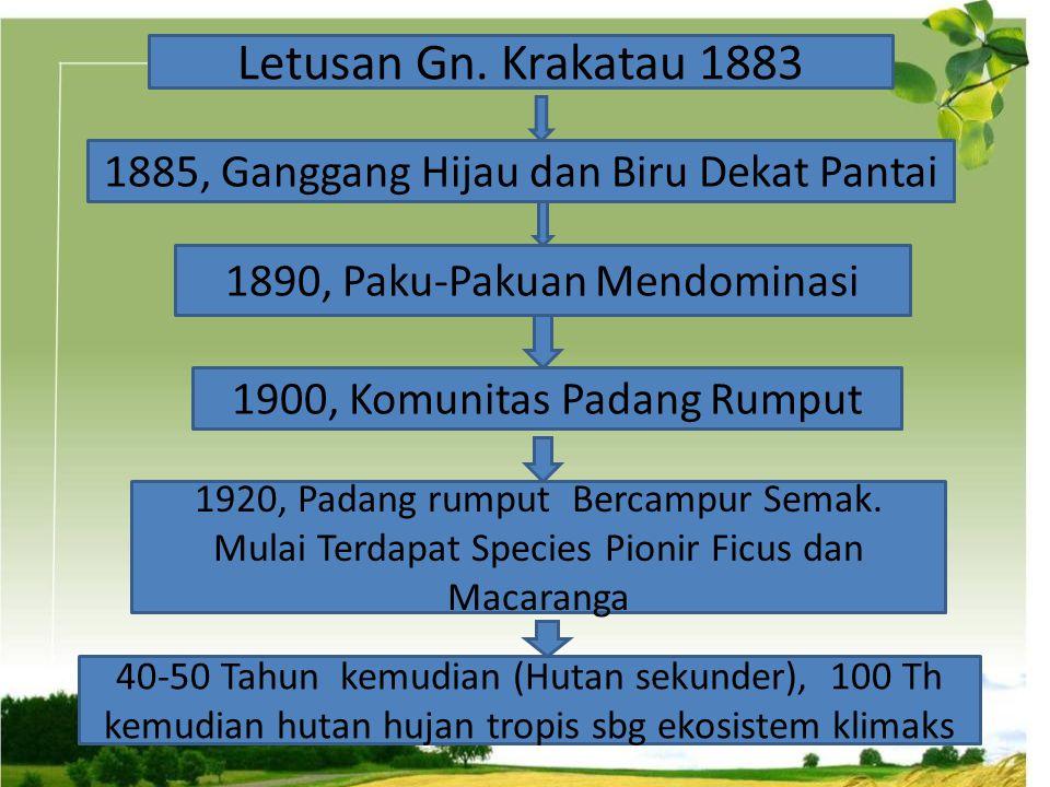 Letusan Gn. Krakatau 1883 1885, Ganggang Hijau dan Biru Dekat Pantai 1890, Paku-Pakuan Mendominasi 1900, Komunitas Padang Rumput 1920, Padang rumput B