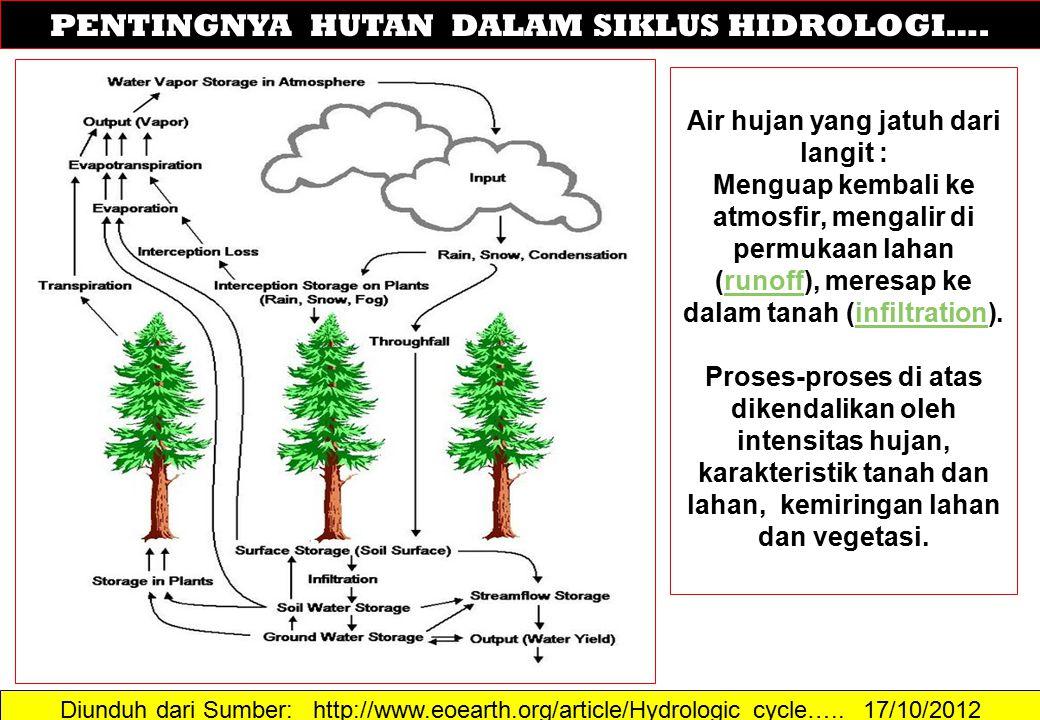 Diunduh dari Sumber: http://www.eoearth.org/article/Hydrologic_cycle….. 17/10/2012 PENTINGNYA HUTAN DALAM SIKLUS HIDROLOGI…. Air hujan yang jatuh dari