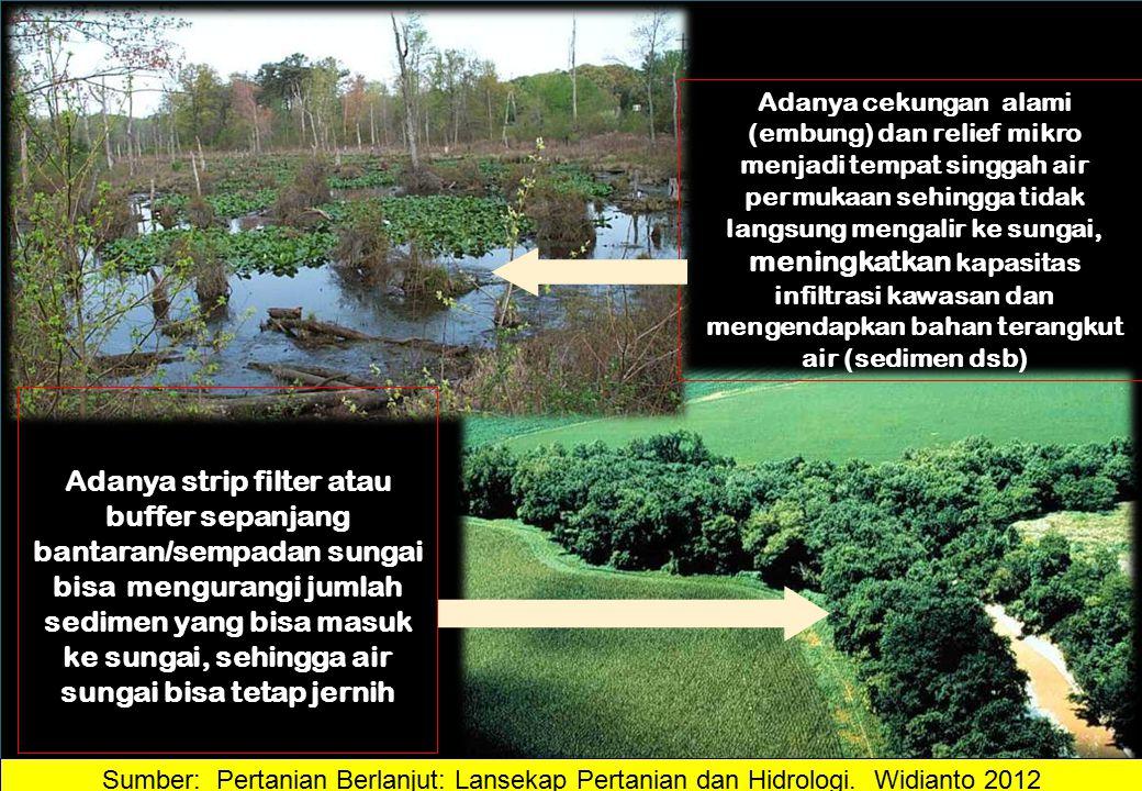 Adanya strip filter atau buffer sepanjang bantaran/sempadan sungai bisa mengurangi jumlah sedimen yang bisa masuk ke sungai, sehingga air sungai bisa