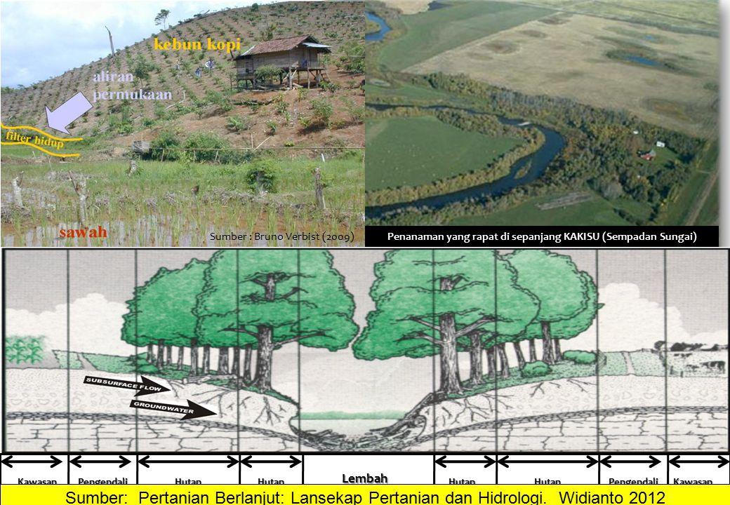 Sumber : Bruno Verbist (2009)Penanaman yang rapat di sepanjang KAKISU (Sempadan Sungai) BAGAIMANA MERANCANG FILTER ATAU BUFFER ? Lembah Aliran Sungai