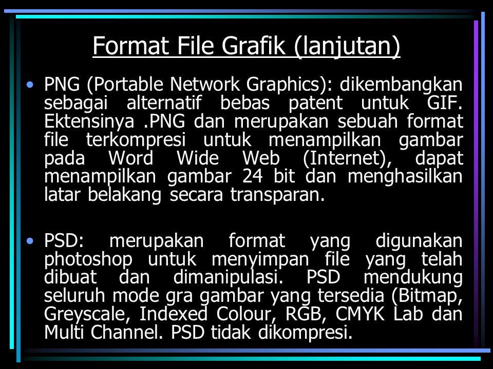 Format File Grafik (lanjutan) PNG (Portable Network Graphics): dikembangkan sebagai alternatif bebas patent untuk GIF. Ektensinya.PNG dan merupakan se