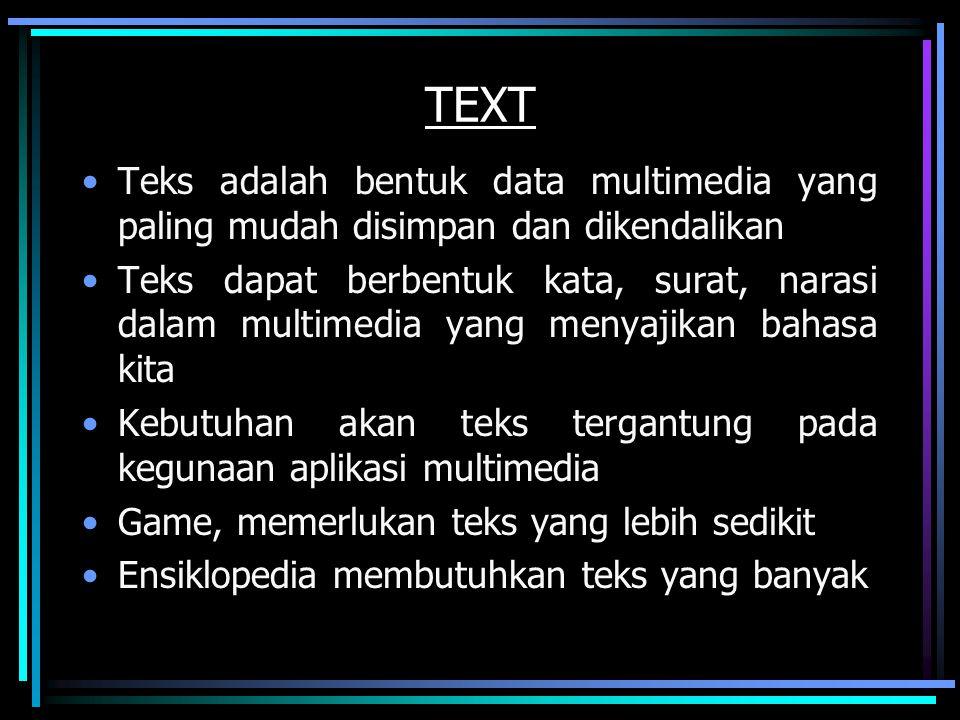 TEXT Teks adalah bentuk data multimedia yang paling mudah disimpan dan dikendalikan Teks dapat berbentuk kata, surat, narasi dalam multimedia yang men