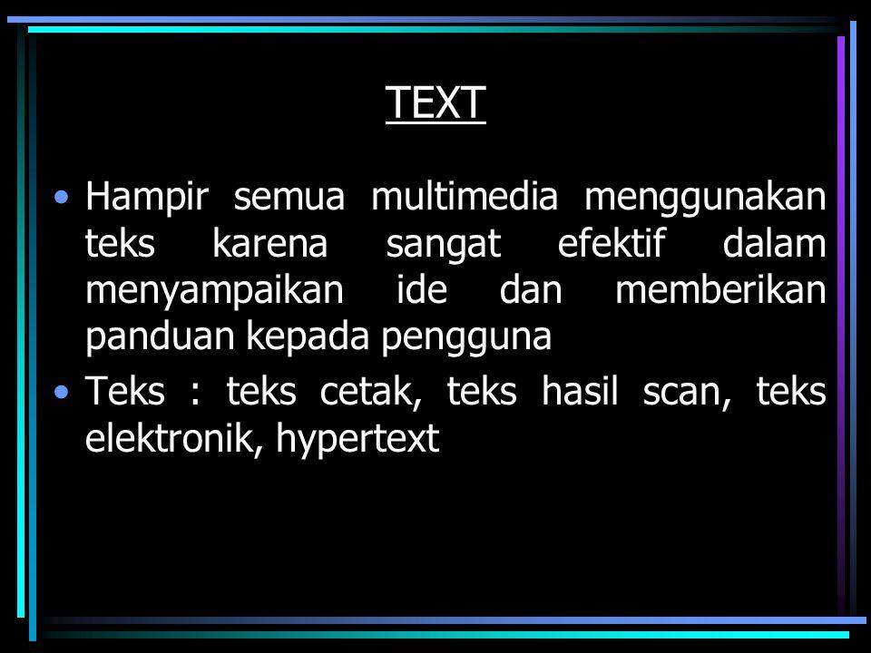 TEXT Hampir semua multimedia menggunakan teks karena sangat efektif dalam menyampaikan ide dan memberikan panduan kepada pengguna Teks : teks cetak, t