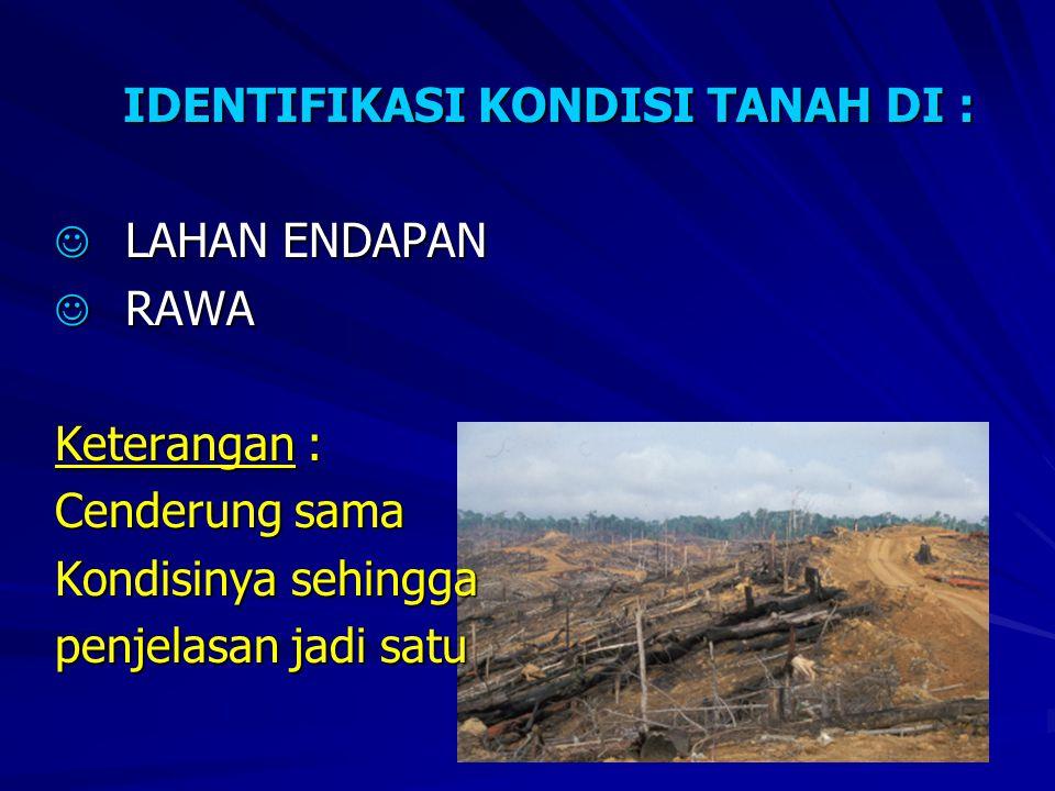 KONDISI TANAH LAHAN ENDAPAN & RAWA:  Terdapat di Daerah lembah sungai, delta dan wilayah pantai (Daerah Cekungan), karena hal itu maka menghasilkan endapan berbagai material hasil erosi.