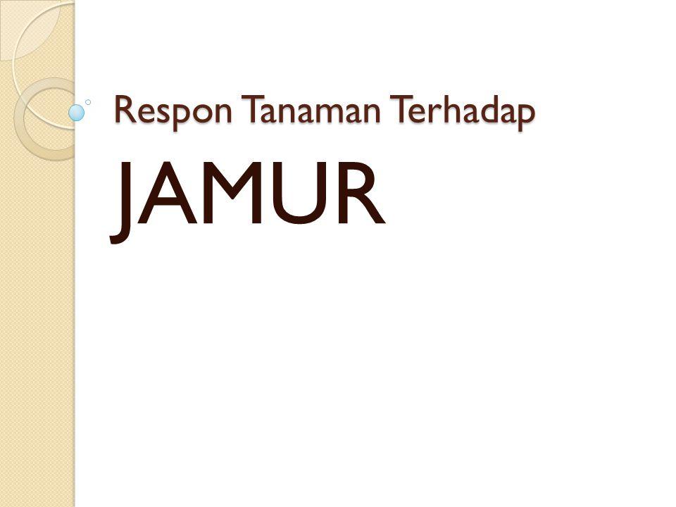 Respon Tanaman Terhadap JAMUR
