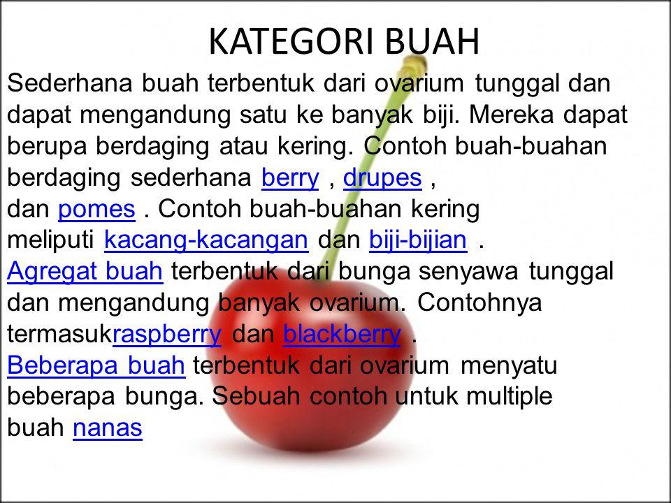 KATEGORI BUAH Sederhana buah terbentuk dari ovarium tunggal dan dapat mengandung satu ke banyak biji.