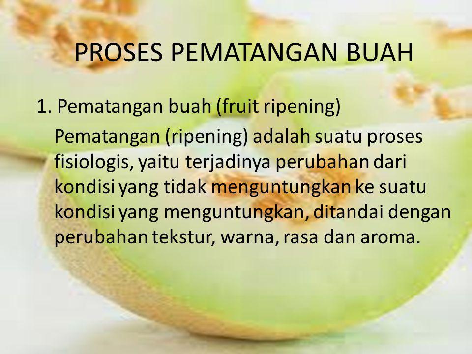PROSES PEMATANGAN BUAH 1.
