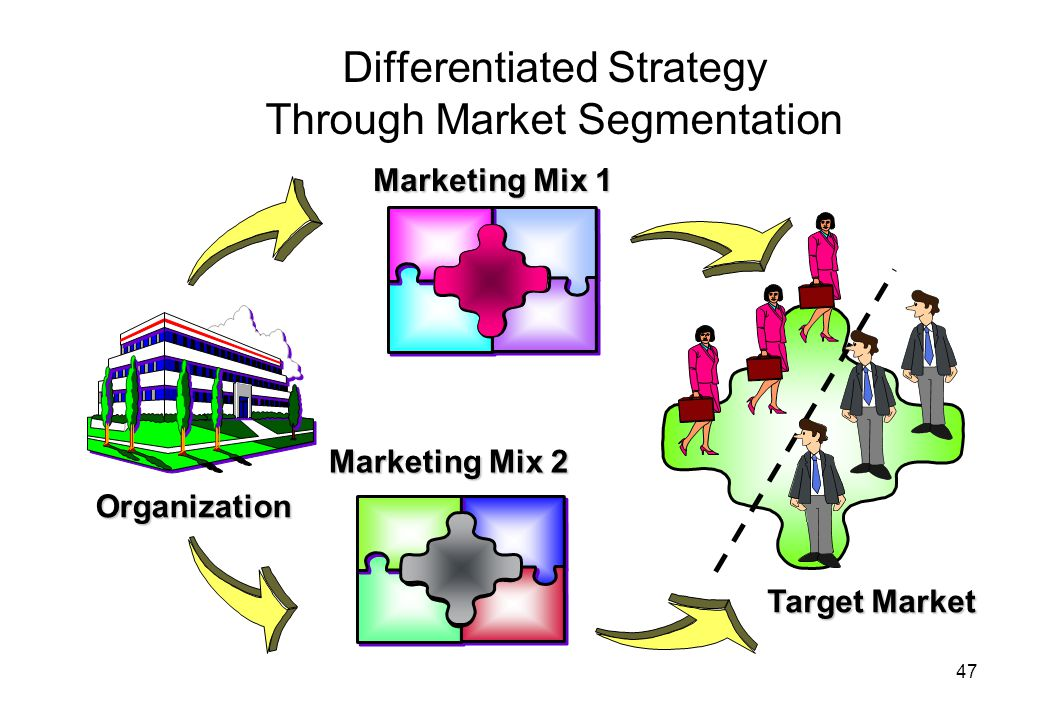 47 Differentiated Strategy Through Market Segmentation Organization Marketing Mix 1 Target Market Marketing Mix 2