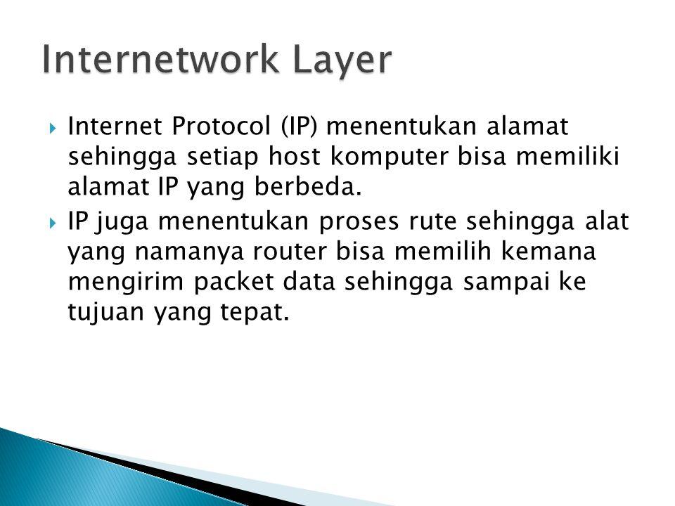  Internet Protocol (IP) menentukan alamat sehingga setiap host komputer bisa memiliki alamat IP yang berbeda.  IP juga menentukan proses rute sehing